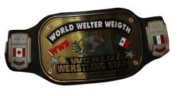 WWS-Welter-Title.png